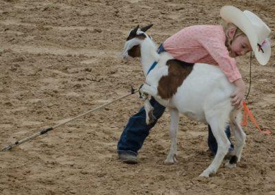 Cutie w Goat