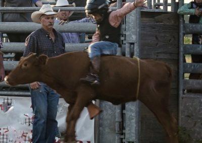 Jr Bull Rider (2)