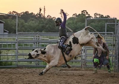 Sr Bull Rider 2